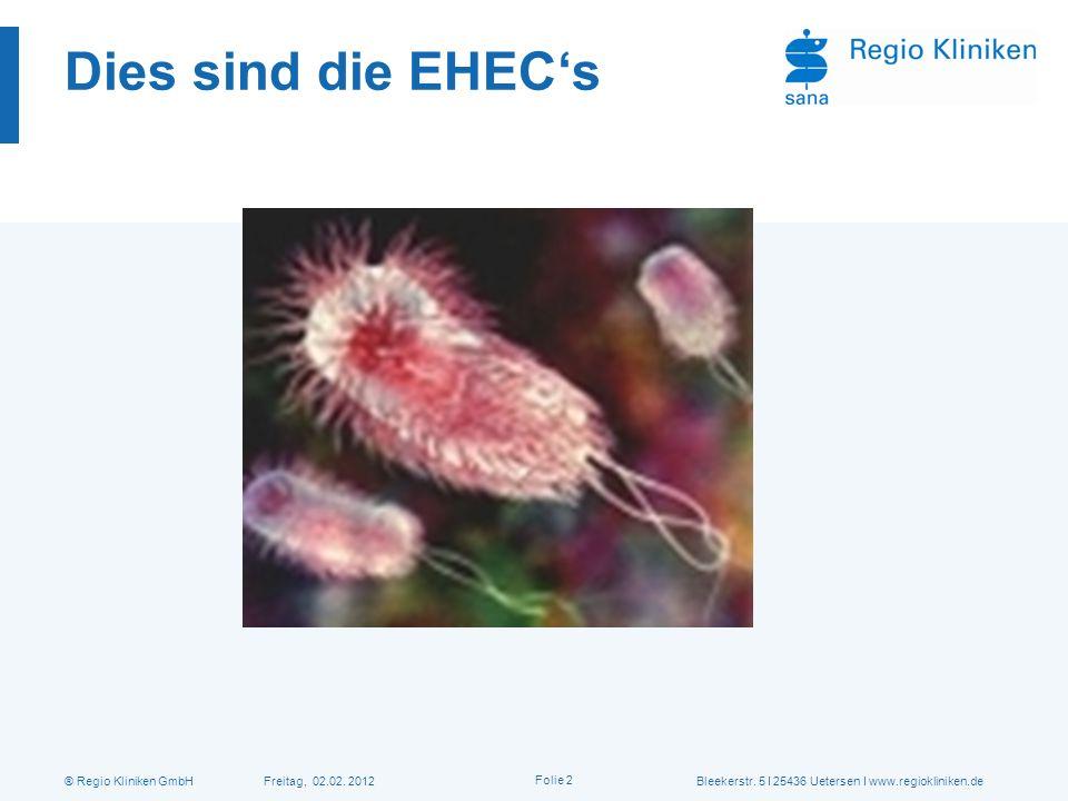 ® Regio Kliniken GmbH Freitag, 02.02. 2012Bleekerstr. 5 I 25436 Uetersen I www.regiokliniken.de Folie 2 Dies sind die EHECs