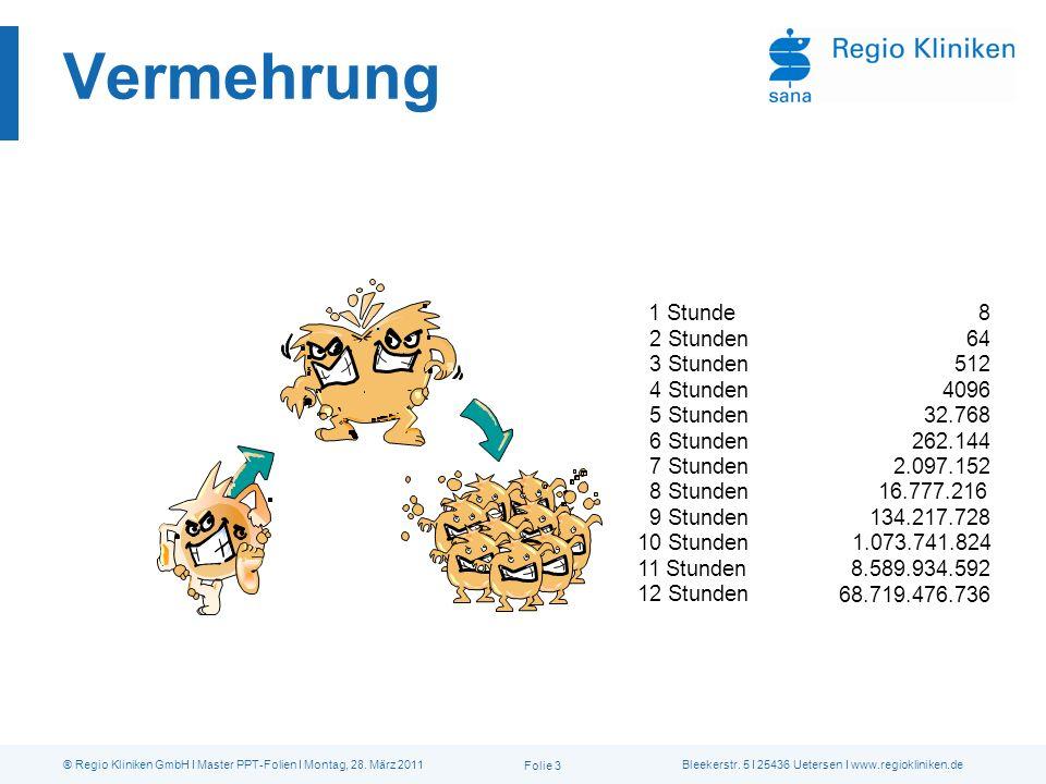 Bleekerstr. 5 I 25436 Uetersen I www.regiokliniken.de® Regio Kliniken GmbH I Master PPT-Folien I Montag, 28. März 2011 Folie 3 Vermehrung 1 Stunde 2 S