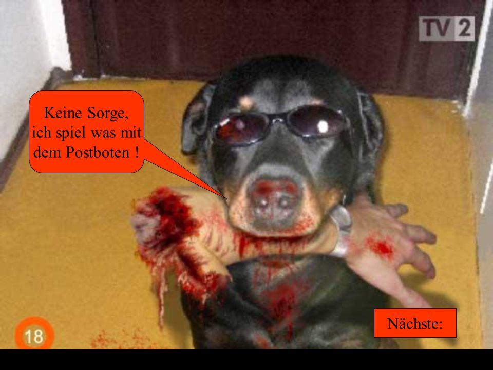 Und was macht der Hund? Antwort: