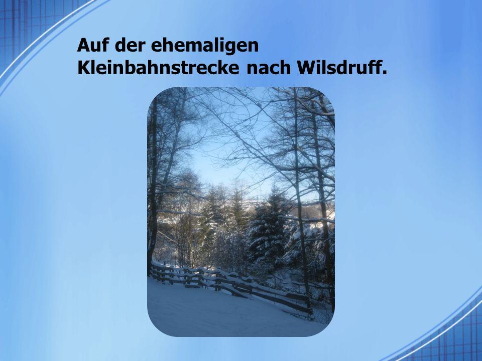 Auf der ehemaligen Kleinbahnstrecke nach Wilsdruff.