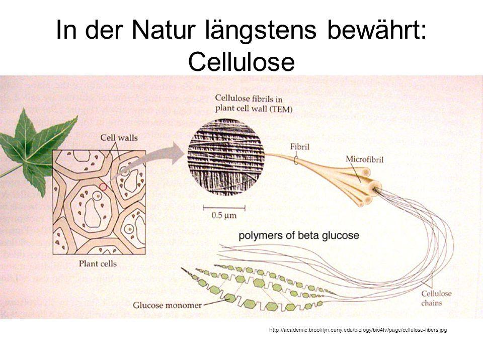 In der Natur längstens bewährt: Cellulose http://academic.brooklyn.cuny.edu/biology/bio4fv/page/cellulose-fibers.jpg