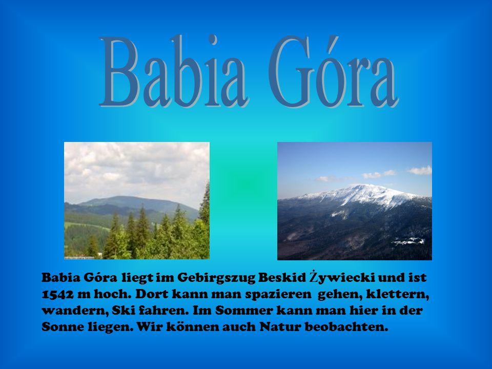 Babia Góra liegt im Gebirgszug Beskid Ż ywiecki und ist 1542 m hoch. Dort kann man spazieren gehen, klettern, wandern, Ski fahren. Im Sommer kann man