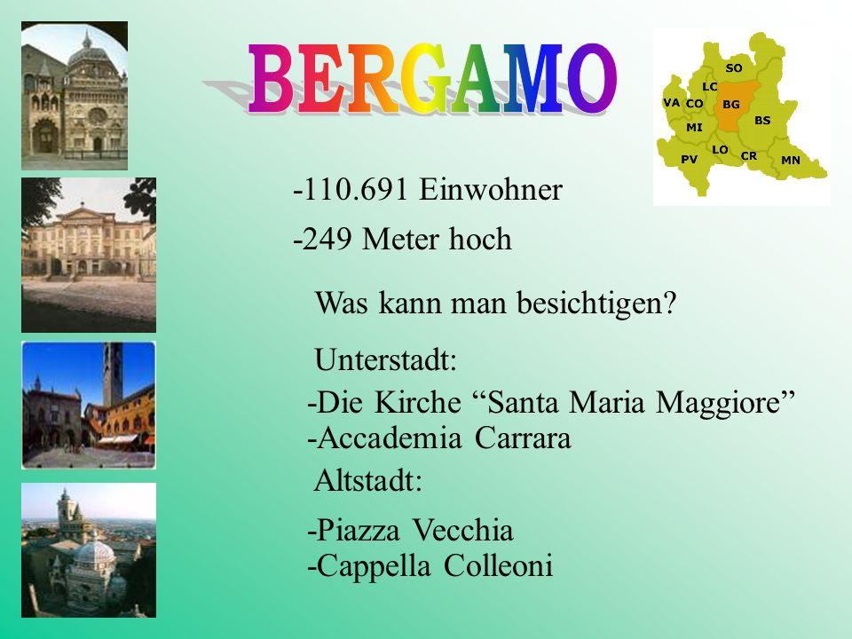 -19 m hoch -47.969 Einwohner Was kann man in Mantova besichtigen? -Altstadt -Palazzo Ducale Was kann man in Mantova machen ? -eine Kreuzfahrt den Po e