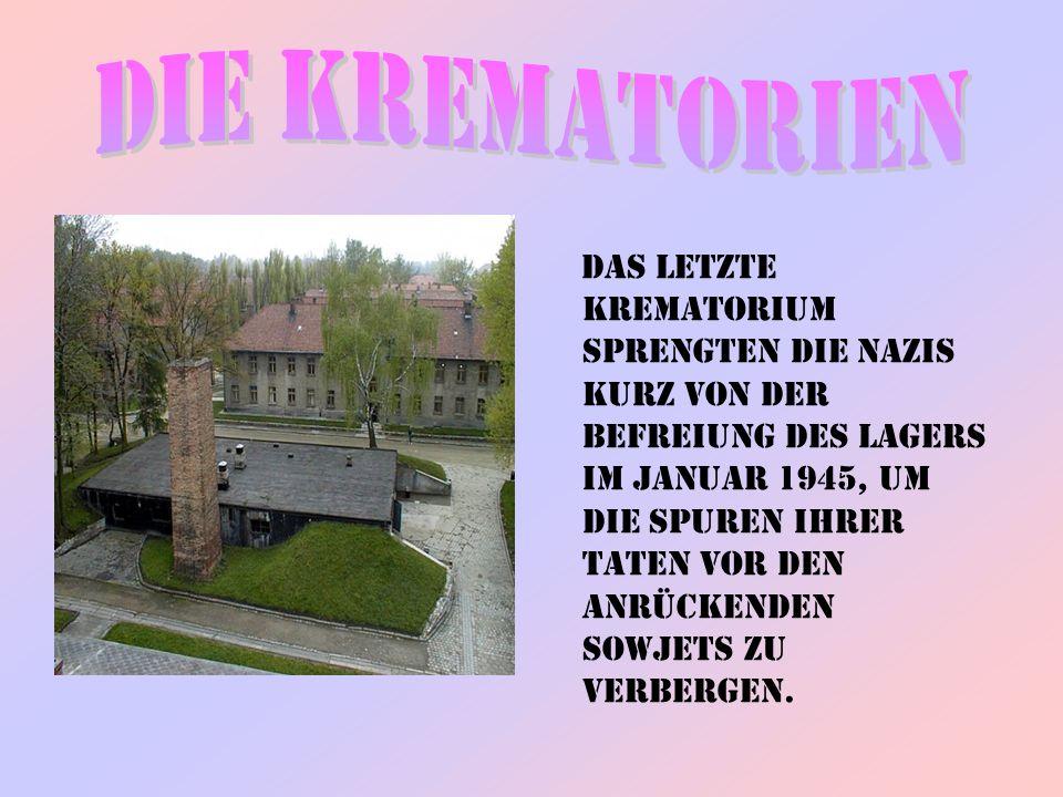 Das letzte Krematorium sprengten die Nazis kurz von der Befreiung des Lagers im Januar 1945, um die Spuren ihrer Taten vor den anrückenden Sowjets zu