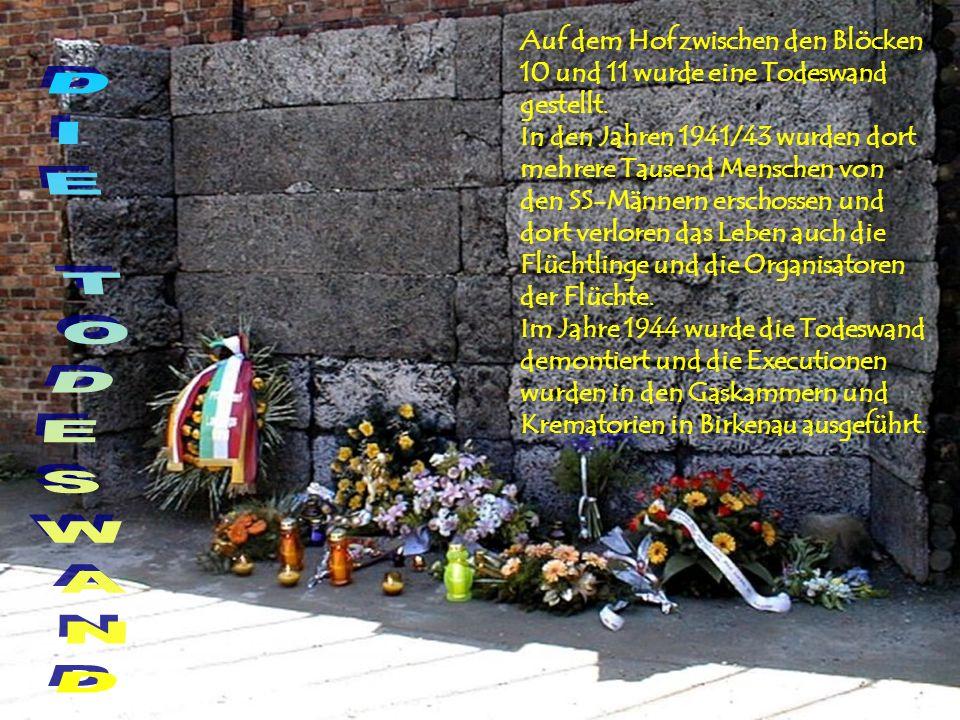 Auf dem Hof zwischen den Blöcken 10 und 11 wurde eine Todeswand gestellt. In den Jahren 1941/43 wurden dort mehrere Tausend Menschen von den SS-Männer