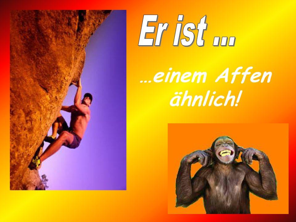 …einem Affen ähnlich!