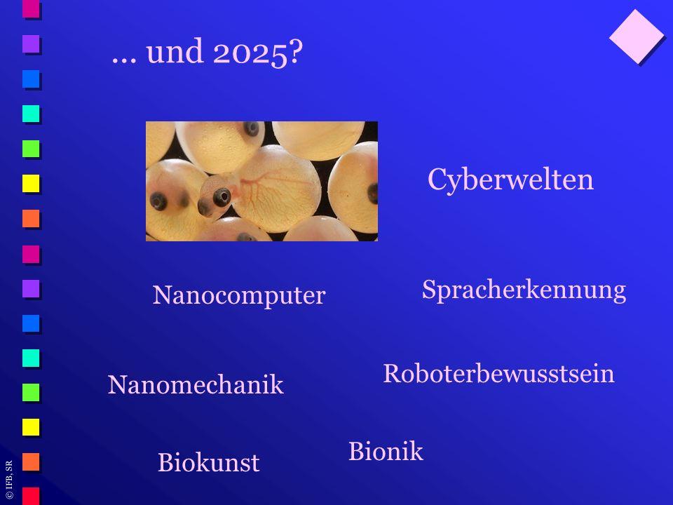 © IFB, SR... und 2025? Cyberwelten Roboterbewusstsein Nanocomputer Spracherkennung Nanomechanik Bionik Biokunst