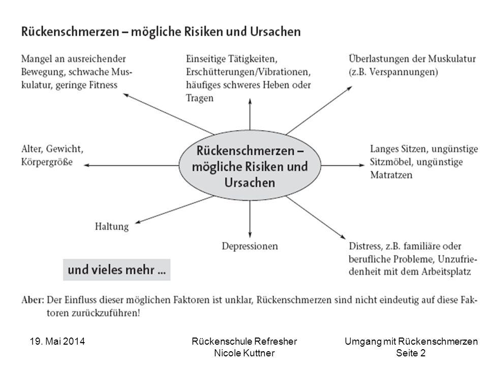 Umgang mit Rückenschmerzen Seite 43 19. Mai 2014Rückenschule Refresher Nicole Kuttner Rückenschmerz