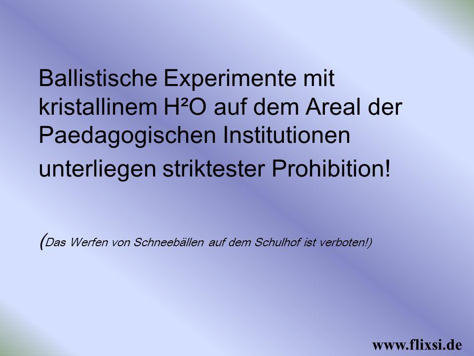 Ballistische Experimente mit kristallinem H²O auf dem Areal der Paedagogischen Institutionen unterliegen striktester Prohibition.
