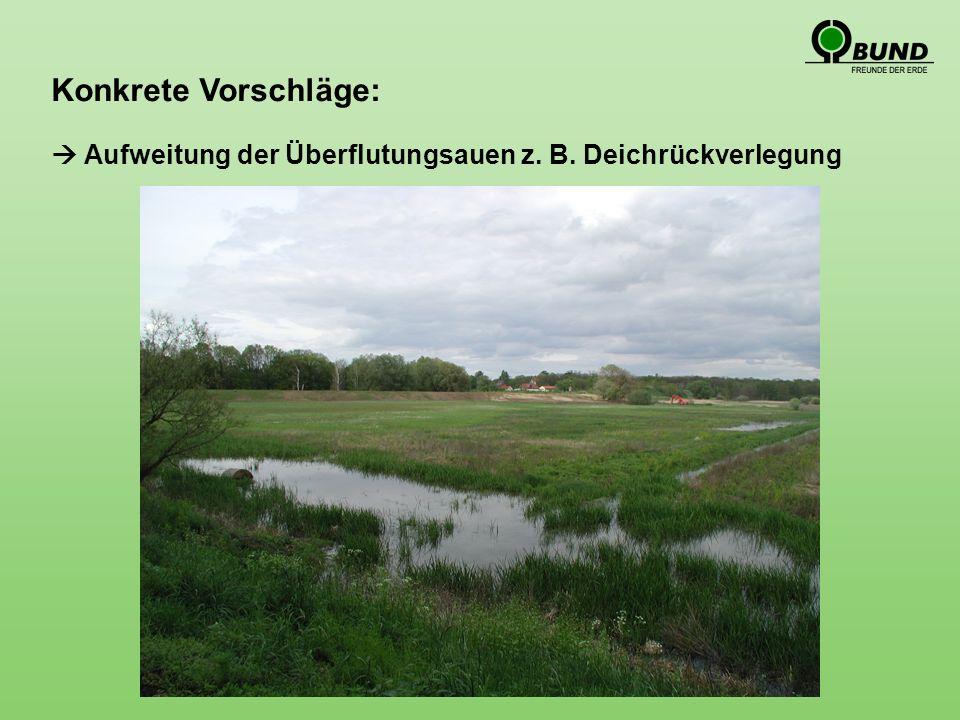 Konkrete Vorschläge: Aufweitung der Überflutungsauen z. B. Deichrückverlegung