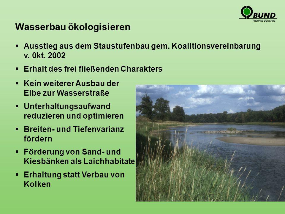 Wasserbau ökologisieren Ausstieg aus dem Staustufenbau gem.