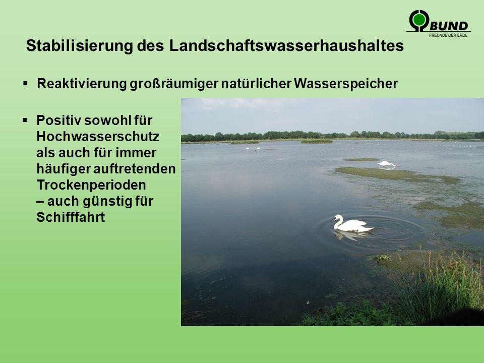 Positiv sowohl für Hochwasserschutz als auch für immer häufiger auftretenden Trockenperioden – auch günstig für Schifffahrt Stabilisierung des Landschaftswasserhaushaltes Reaktivierung großräumiger natürlicher Wasserspeicher