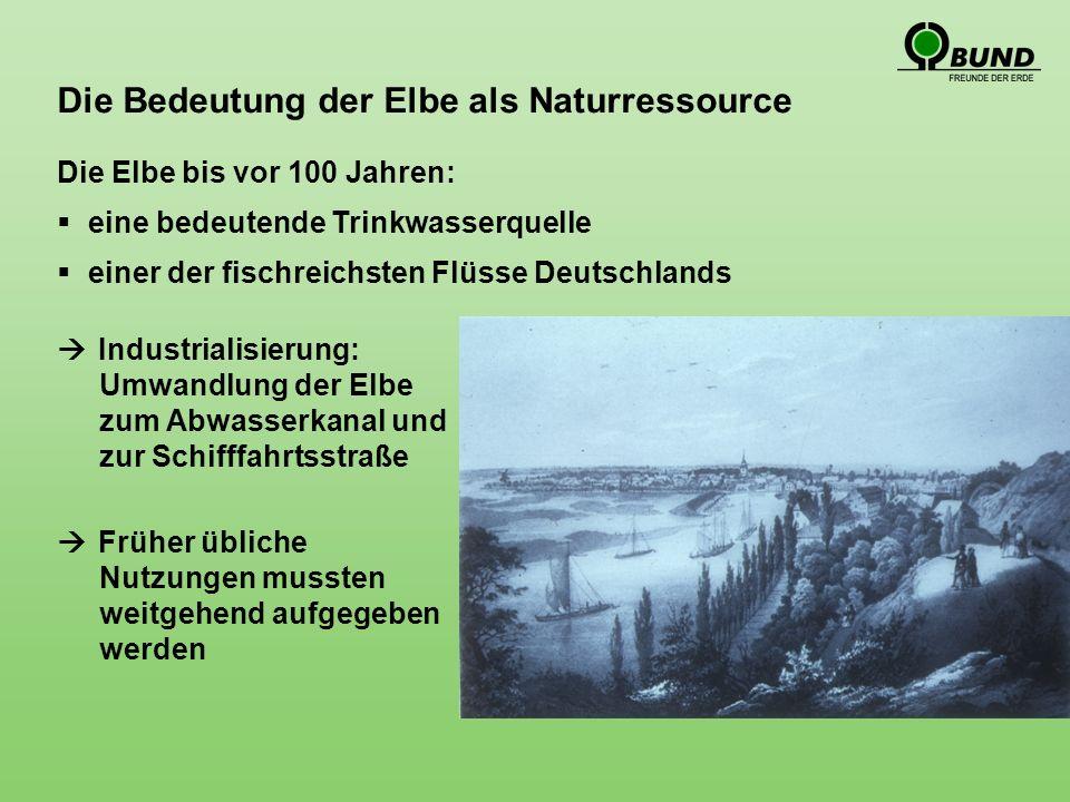 Die Bedeutung der Elbe als Naturressource Die Elbe bis vor 100 Jahren: eine bedeutende Trinkwasserquelle einer der fischreichsten Flüsse Deutschlands Industrialisierung: Umwandlung der Elbe zum Abwasserkanal und zur Schifffahrtsstraße Früher übliche Nutzungen mussten weitgehend aufgegeben werden