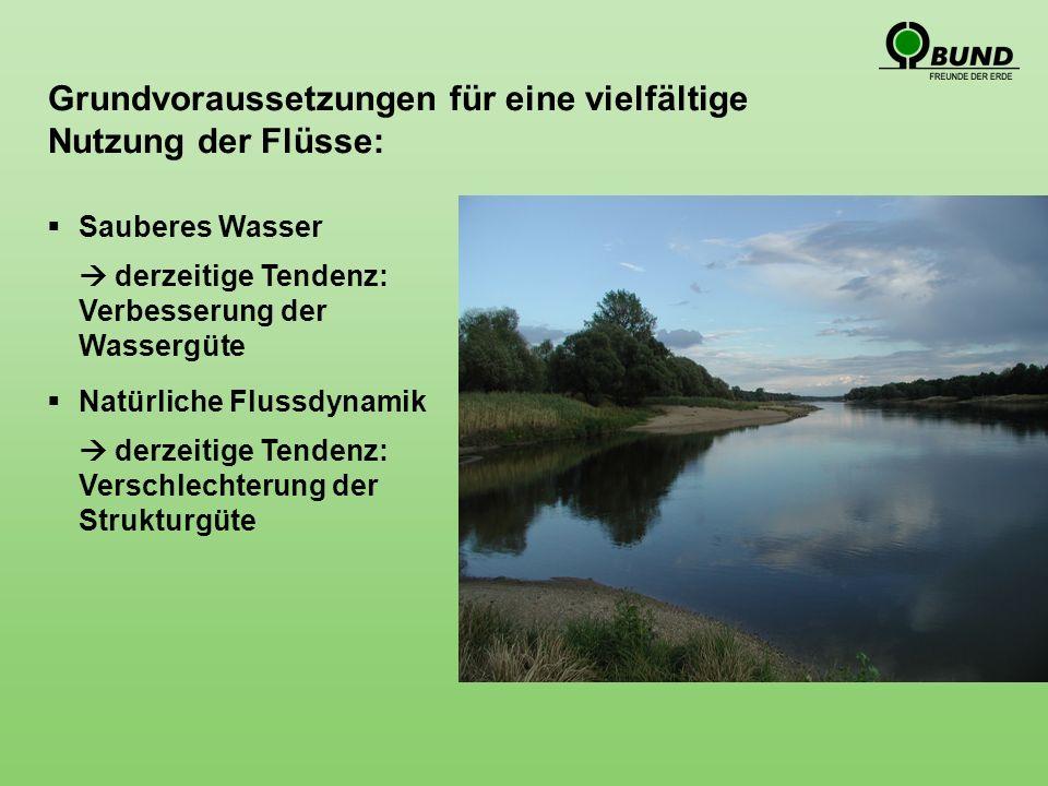 Grundvoraussetzungen für eine vielfältige Nutzung der Flüsse: Sauberes Wasser derzeitige Tendenz: Verbesserung der Wassergüte Natürliche Flussdynamik derzeitige Tendenz: Verschlechterung der Strukturgüte