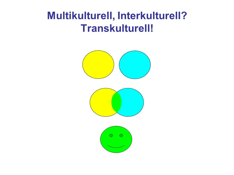 Multikulturell, Interkulturell? Transkulturell!