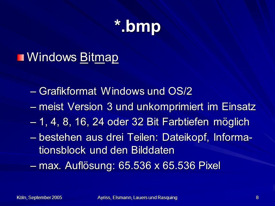 Köln, September 2005 Ayriss, Elsmann, Lauers und Rasquing 9 *.bmp Vorteile –wird von fast allen Windows- und OS/2- Programmen unterstützt Nachteile –fast nur auf IBM- kompatiblen Rechnern –hoher Speicherbedarf: Foto mit einer Auflös- ung von 1600 x 1200 Pixel Dateigröße von 5,76 MB –nicht im Internet einsetzbar