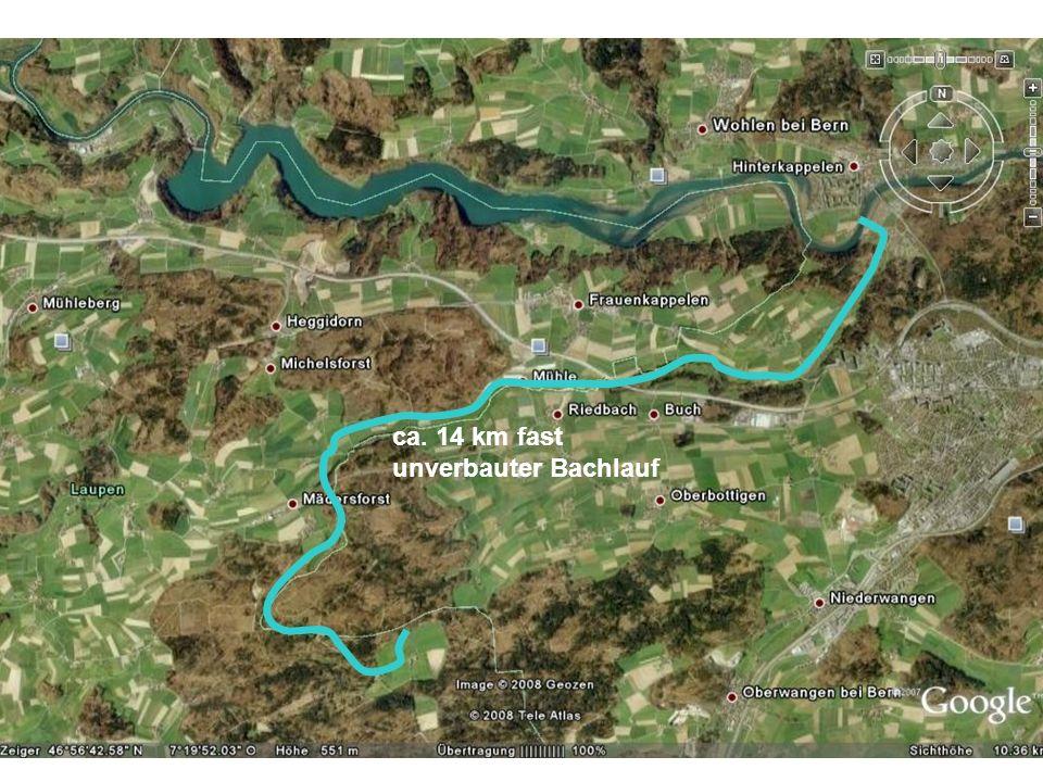ca. 14 km fast unverbauter Bachlauf