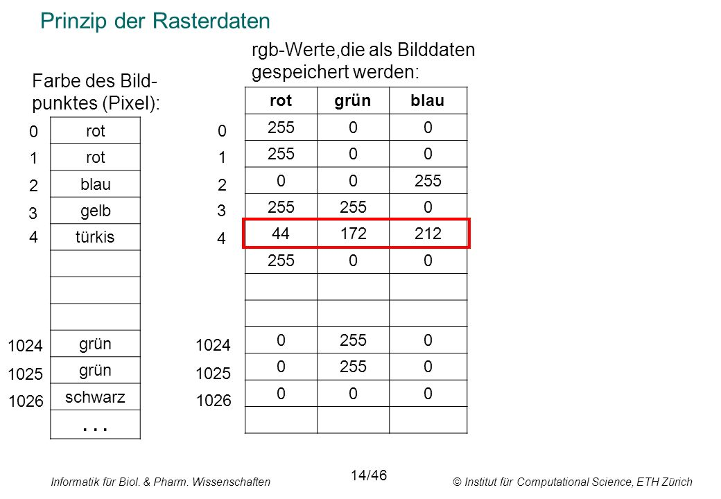Informatik für Biol. & Pharm. Wissenschaften © Institut für Computational Science, ETH Zürich Prinzip der Rasterdaten rot blau gelb türkis grün schwar
