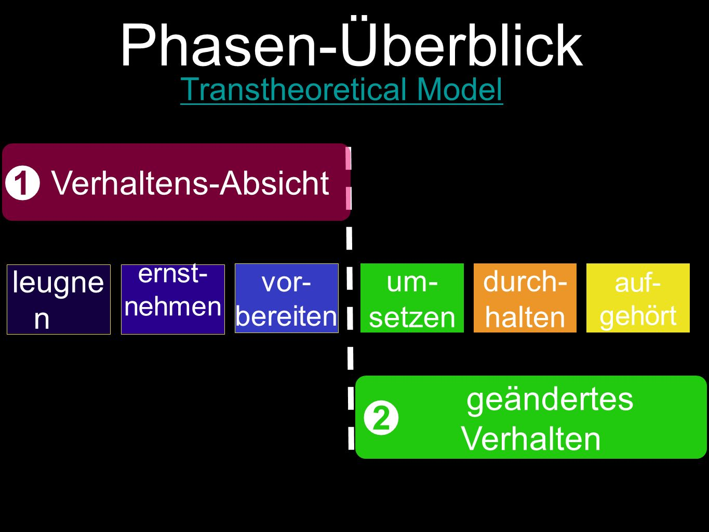 Phasen-Überblick 12 3 4 56 leugne n ernst- nehmen vor- bereiten um- setzen durch- halten auf- gehört Verhaltens-Absicht geändertes Verhalten Transtheoretical Model