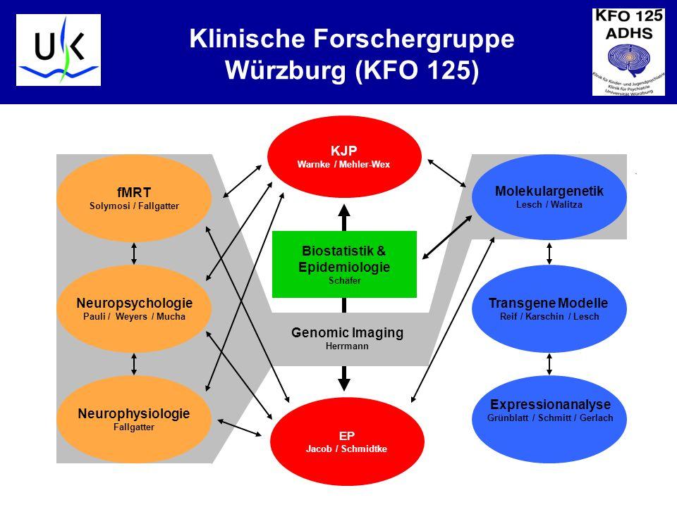 KJPP Klinische Forschergruppe Würzburg (KFO 125) Biostatistik & Epidemiologie Schäfer KJP Warnke / Mehler-Wex EP Jacob / Schmidtke Genomic Imaging Herrmann fMRT Solymosi / Fallgatter Neurophysiologie Fallgatter Neuropsychologie Pauli / Weyers / Mucha Molekulargenetik Lesch / Walitza Transgene Modelle Reif / Karschin / Lesch Expressionanalyse Grünblatt / Schmitt / Gerlach