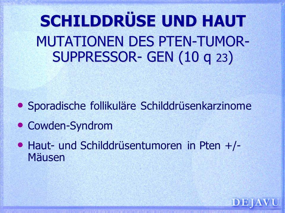 SCHILDDRÜSE UND HAUT MUTATIONEN DES PTEN-TUMOR- SUPPRESSOR- GEN (10 q 23 ) Sporadische follikuläre Schilddrüsenkarzinome Cowden-Syndrom Haut- und Schi