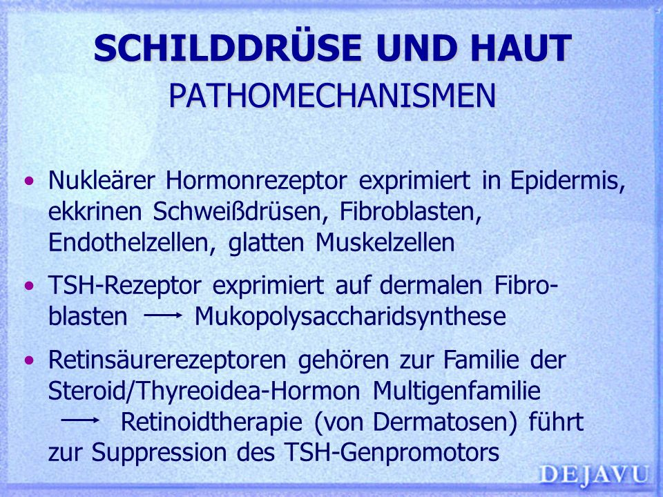 SCHILDDRÜSE UND HAUT PATHOMECHANISMEN Nukleärer Hormonrezeptor exprimiert in Epidermis, ekkrinen Schweißdrüsen, Fibroblasten, Endothelzellen, glatten