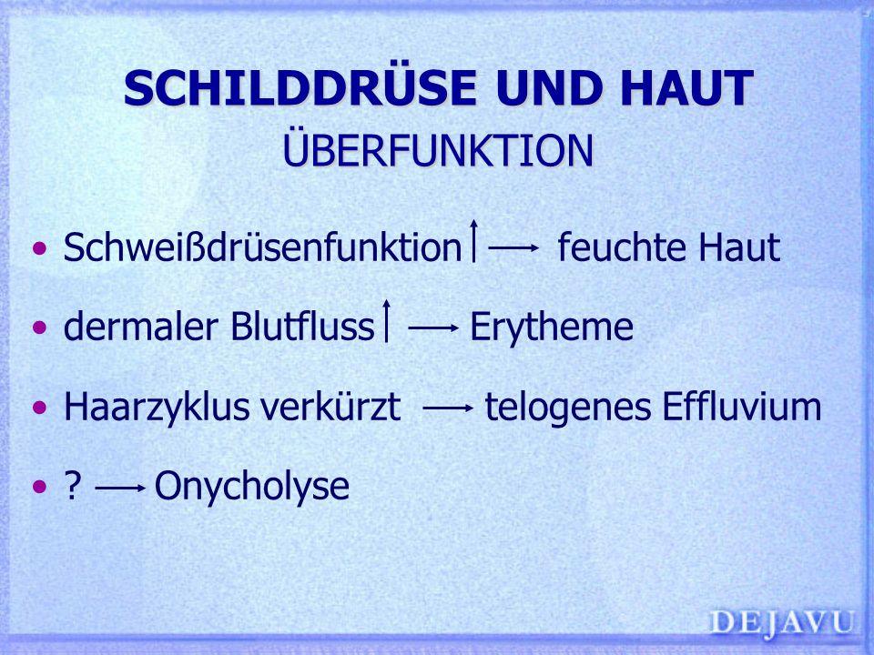 SCHILDDRÜSE UND HAUT PATHOMECHANISMEN Nukleärer Hormonrezeptor exprimiert in Epidermis, ekkrinen Schweißdrüsen, Fibroblasten, Endothelzellen, glatten Muskelzellen TSH-Rezeptor exprimiert auf dermalen Fibro- blasten Mukopolysaccharidsynthese Retinsäurerezeptoren gehören zur Familie der Steroid/Thyreoidea-Hormon Multigenfamilie Retinoidtherapie (von Dermatosen) führt zur Suppression des TSH-Genpromotors