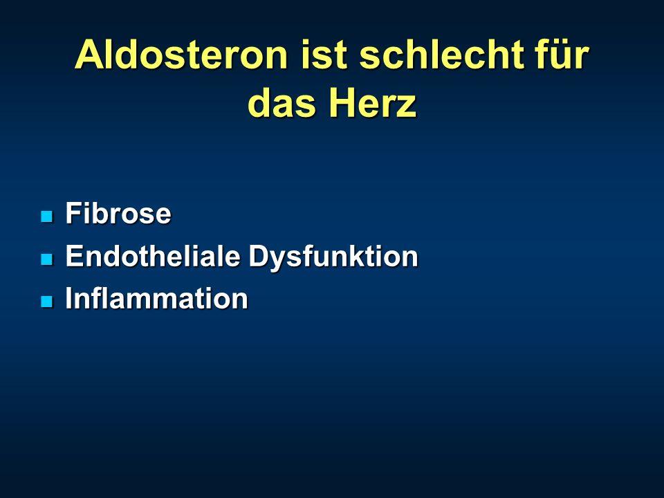 Aldosteron ist schlecht für das Herz Fibrose Fibrose Endotheliale Dysfunktion Endotheliale Dysfunktion Inflammation Inflammation