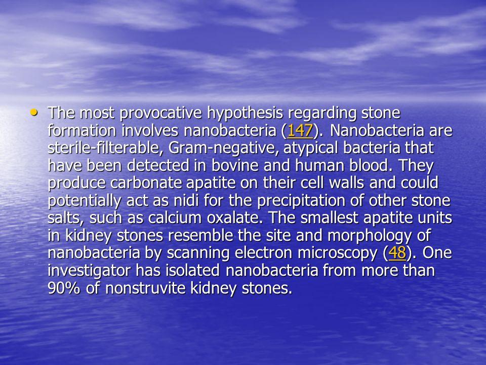 The most provocative hypothesis regarding stone formation involves nanobacteria (147). Nanobacteria are sterile-filterable, Gram-negative, atypical ba