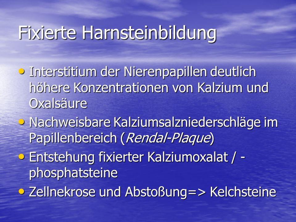 Fixierte Harnsteinbildung Interstitium der Nierenpapillen deutlich höhere Konzentrationen von Kalzium und Oxalsäure Interstitium der Nierenpapillen deutlich höhere Konzentrationen von Kalzium und Oxalsäure Nachweisbare Kalziumsalzniederschläge im Papillenbereich (Rendal-Plaque) Nachweisbare Kalziumsalzniederschläge im Papillenbereich (Rendal-Plaque) Entstehung fixierter Kalziumoxalat / - phosphatsteine Entstehung fixierter Kalziumoxalat / - phosphatsteine Zellnekrose und Abstoßung=> Kelchsteine Zellnekrose und Abstoßung=> Kelchsteine