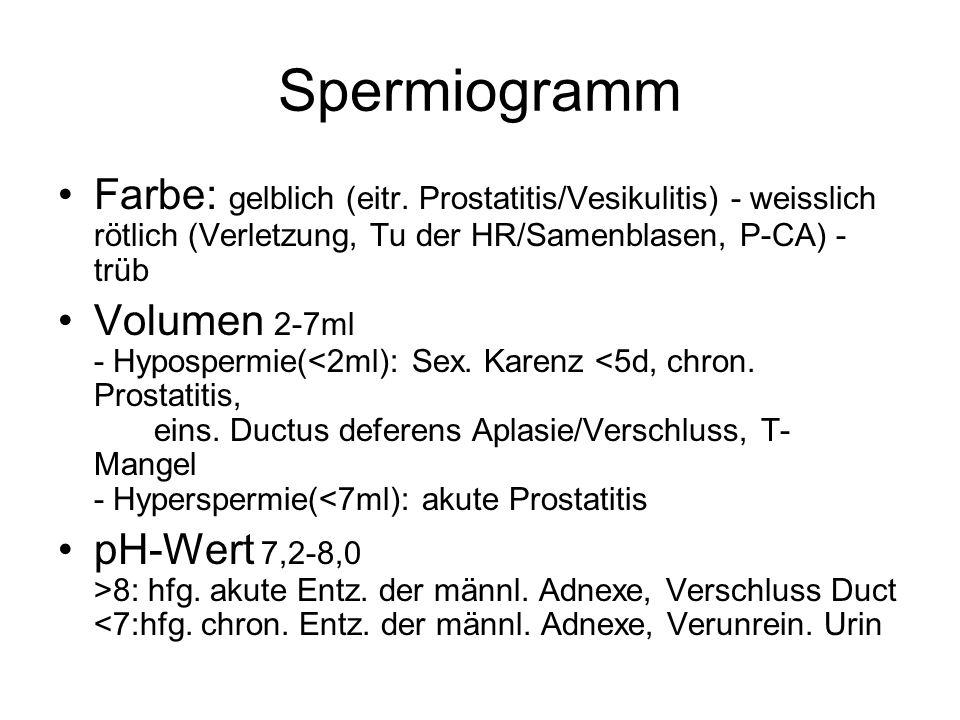 Spermiogramm Farbe: gelblich (eitr. Prostatitis/Vesikulitis) - weisslich rötlich (Verletzung, Tu der HR/Samenblasen, P-CA) - trüb Volumen 2-7ml - Hypo