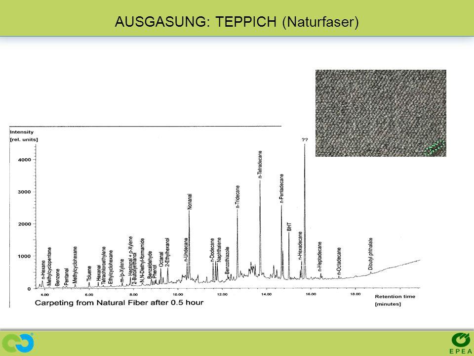 AUSGASUNG: TEPPICH (Naturfaser)
