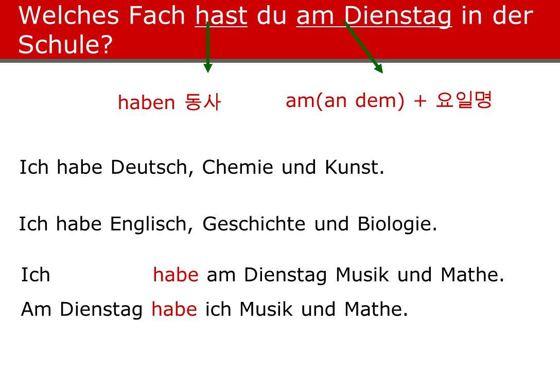 Welches Fach hast du am Dienstag in der Schule? Ich habe Deutsch, Chemie und Kunst. Ich habe Englisch, Geschichte und Biologie. am(an dem) + haben Ich