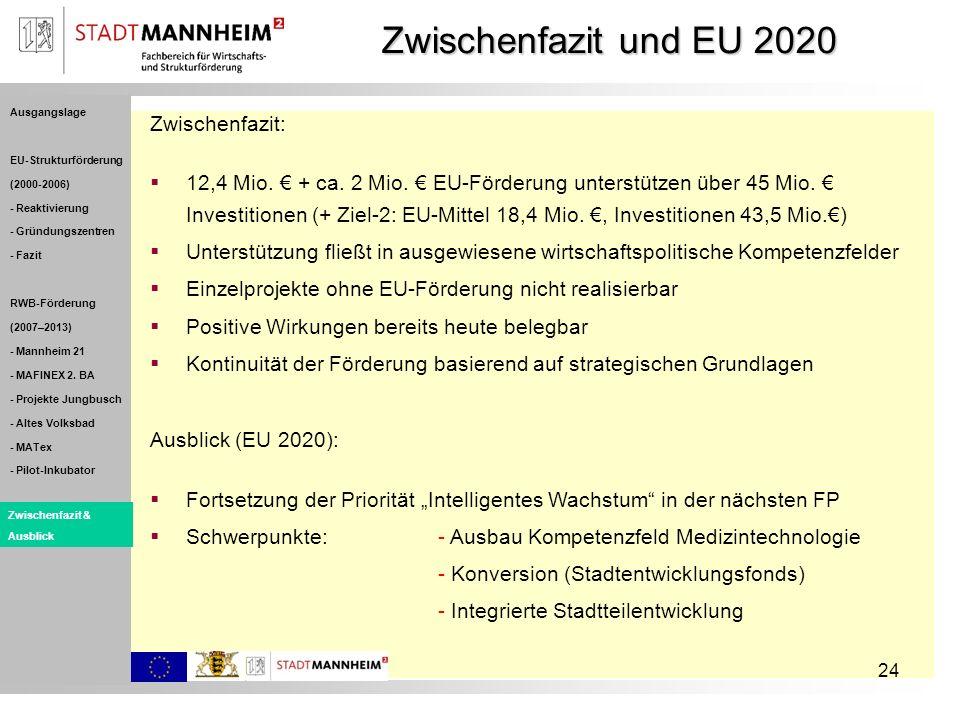 24 Zwischenfazit: 12,4 Mio. + ca. 2 Mio. EU-Förderung unterstützen über 45 Mio. Investitionen (+ Ziel-2: EU-Mittel 18,4 Mio., Investitionen 43,5 Mio.)