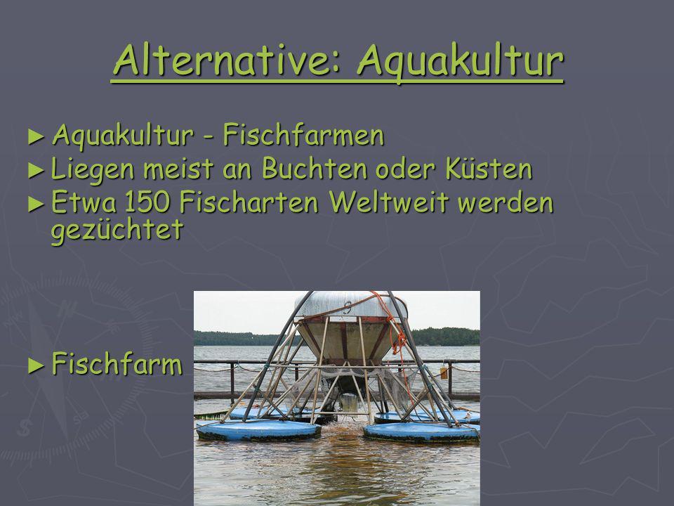 Alternative: Aquakultur Aquakultur - Fischfarmen Aquakultur - Fischfarmen Liegen meist an Buchten oder Küsten Liegen meist an Buchten oder Küsten Etwa 150 Fischarten Weltweit werden gezüchtet Etwa 150 Fischarten Weltweit werden gezüchtet Fischfarm Fischfarm