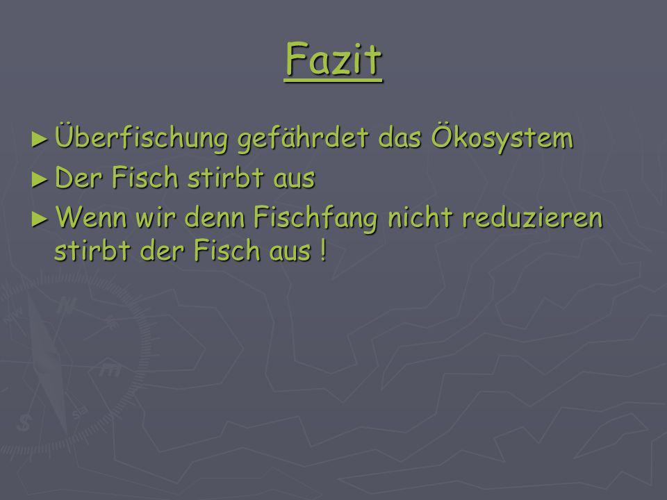 Fazit Überfischung gefährdet das Ökosystem Überfischung gefährdet das Ökosystem Der Fisch stirbt aus Der Fisch stirbt aus Wenn wir denn Fischfang nicht reduzieren stirbt der Fisch aus .