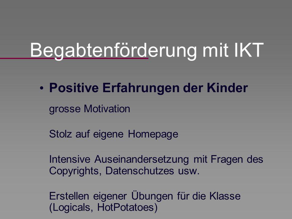 Positive Erfahrungen der Kinder grosse Motivation Stolz auf eigene Homepage Intensive Auseinandersetzung mit Fragen des Copyrights, Datenschutzes usw.