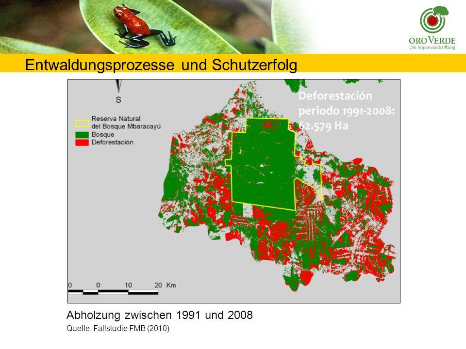 Entwaldungsprozesse und Schutzerfolg Abholzung zwischen 1991 und 2008 Quelle: Fallstudie FMB (2010)