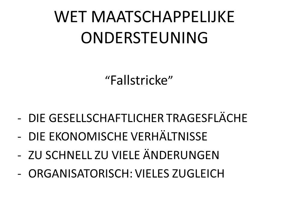 WET MAATSCHAPPELIJKE ONDERSTEUNING Fallstricke -DIE GESELLSCHAFTLICHER TRAGESFLÄCHE -DIE EKONOMISCHE VERHÄLTNISSE -ZU SCHNELL ZU VIELE ÄNDERUNGEN -ORGANISATORISCH: VIELES ZUGLEICH