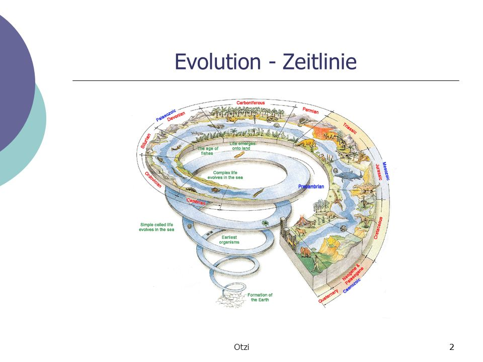 2Otzi2 Evolution - Zeitlinie