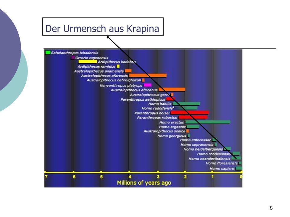 8 Der Urmensch aus Krapina