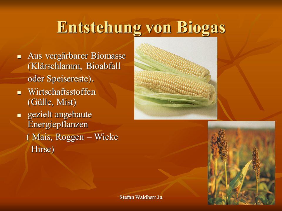 Stefan Waldherr 3a Entstehung von Biogas Aus vergärbarer Biomasse (Klärschlamm, Bioabfall oder Speisereste). Aus vergärbarer Biomasse (Klärschlamm, Bi