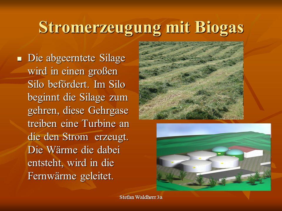 Stefan Waldherr 3a Stromerzeugung mit Biogas Die abgeerntete Silage wird in einen großen Silo befördert. Im Silo beginnt die Silage zum gehren, diese