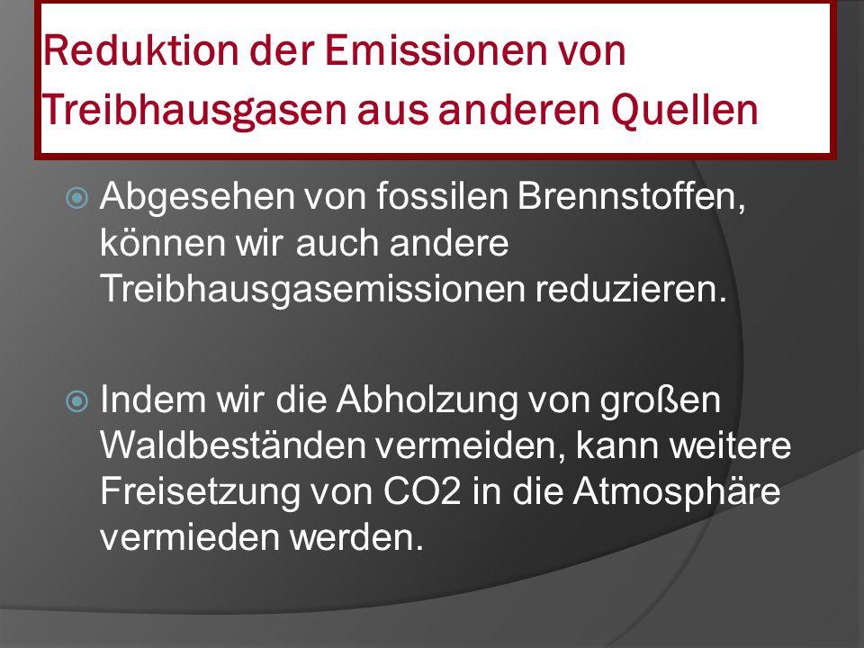 Reduktion der Emissionen von Treibhausgasen aus anderen Quellen Abgesehen von fossilen Brennstoffen, können wir auch andere Treibhausgasemissionen red