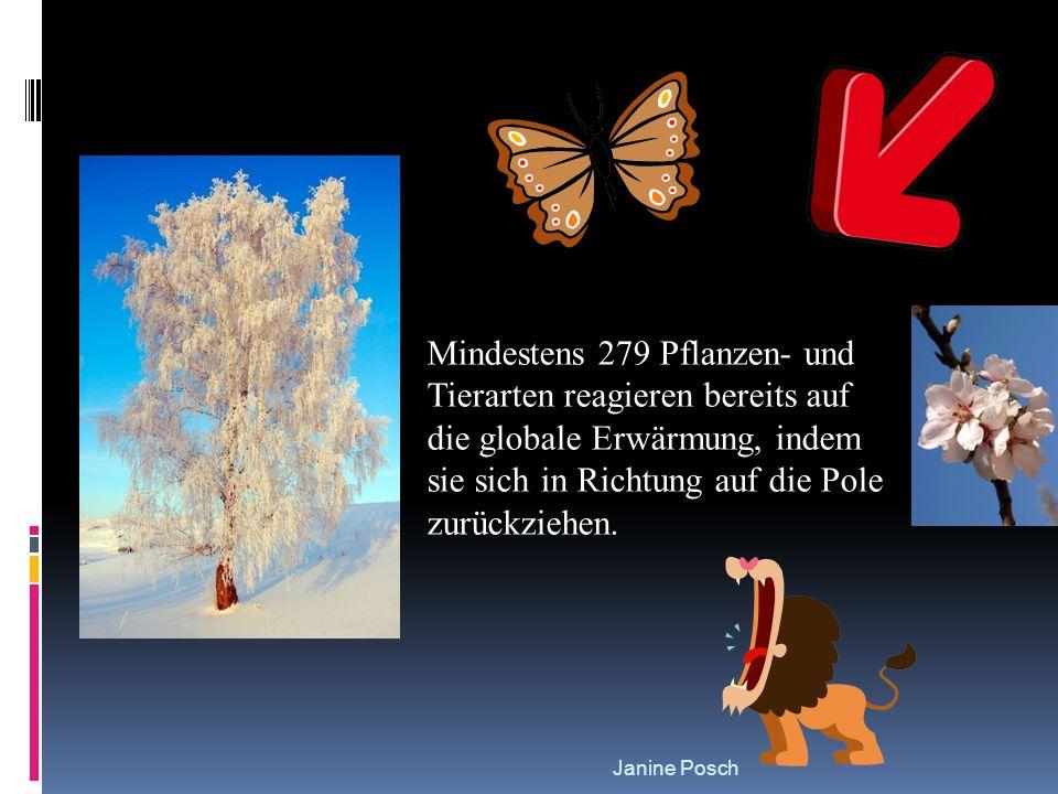Janine Posch Mindestens 279 Pflanzen- und Tierarten reagieren bereits auf die globale Erwärmung, indem sie sich in Richtung auf die Pole zurückziehen.