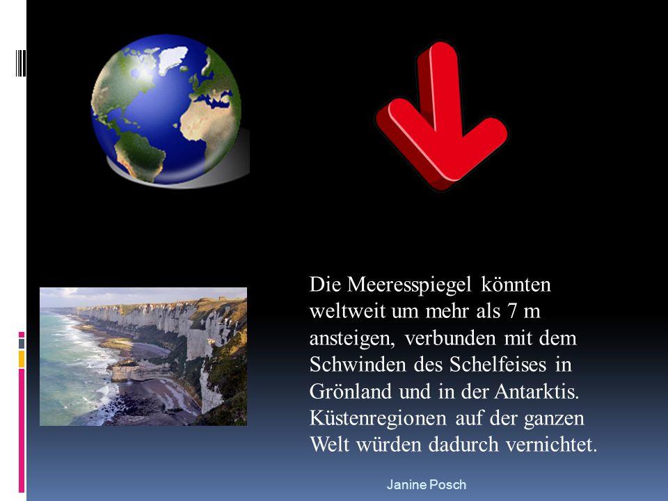 Janine Posch Die Meeresspiegel könnten weltweit um mehr als 7 m ansteigen, verbunden mit dem Schwinden des Schelfeises in Grönland und in der Antarkti