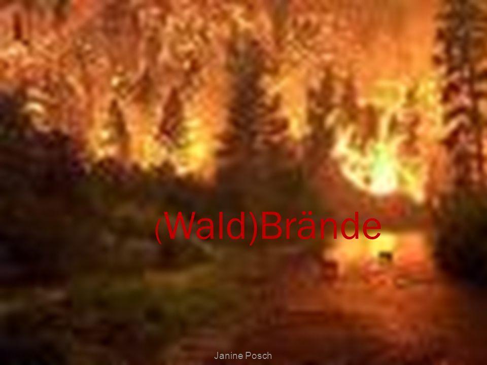 ( Wald)Brände