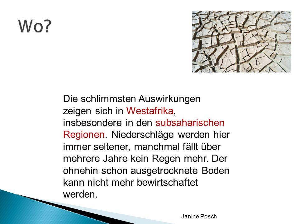 Janine Posch Flutung