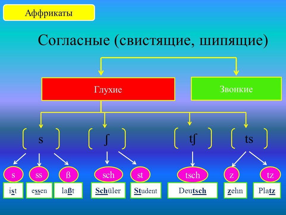 Согласные Щелевые Глухие Звонкие h f ch h- habe f v ph farbe vier Physik После i / e ҁ ich После гласных x auch