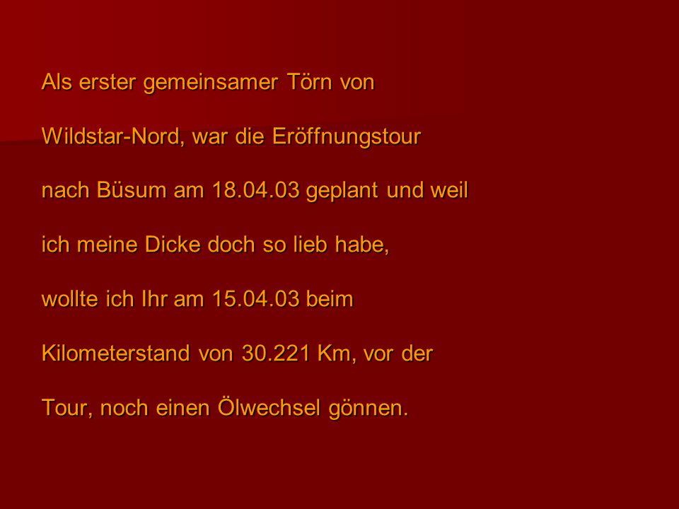 Als erster gemeinsamer Törn von Wildstar-Nord, war die Eröffnungstour nach Büsum am 18.04.03 geplant und weil ich meine Dicke doch so lieb habe, wollt